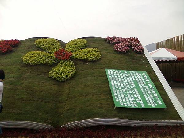 102年新社花海 (3)