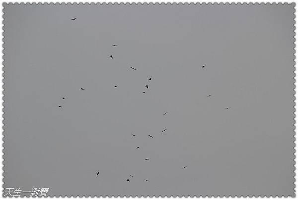 P1040159