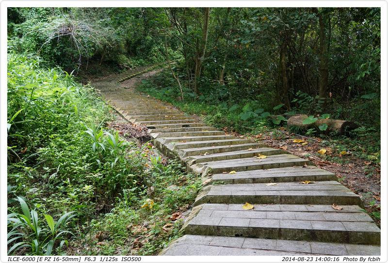 一路都是階梯往上