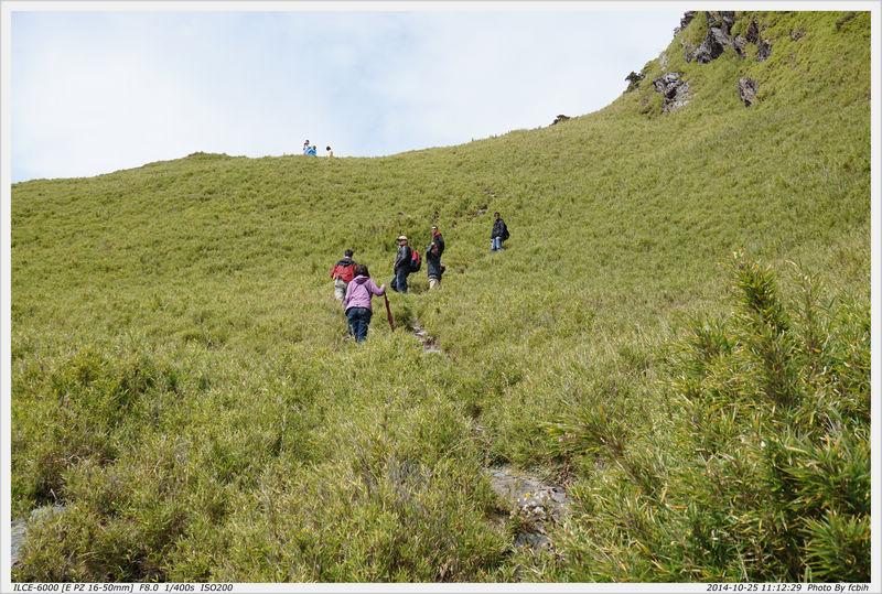 合歡山主峰步道