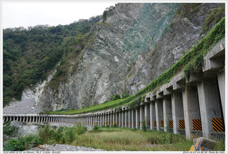 白楊步道-明隧道內