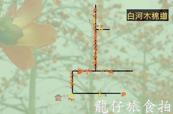 2016木棉道0.jpg