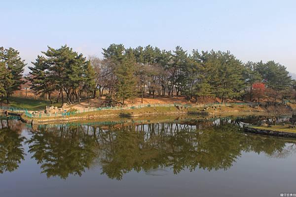 韓國釜山賞楓26.jpg