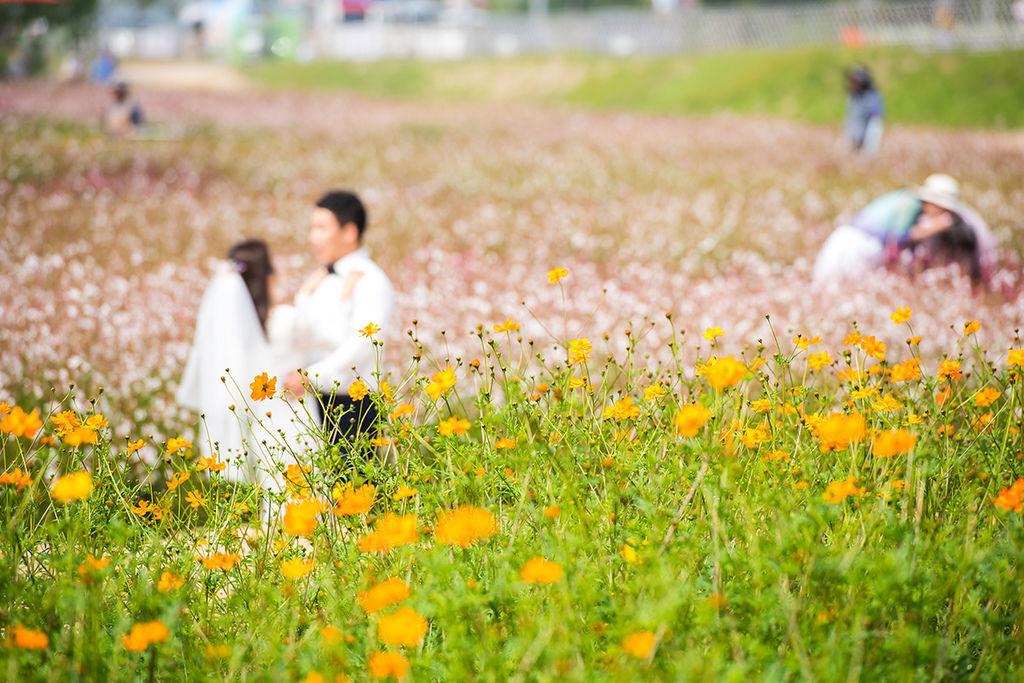 25-양주공원