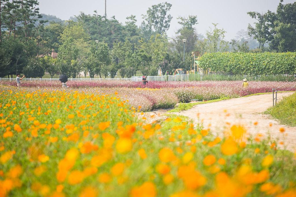 28-양주공원