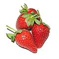 糖尿病水果12