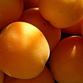 apricot-1496007-640x480.jpg