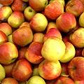 fruit-1329114-640x480.jpg