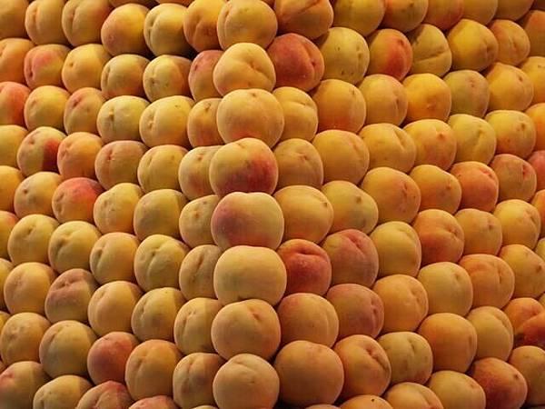 peaches-1258753-640x480.jpg