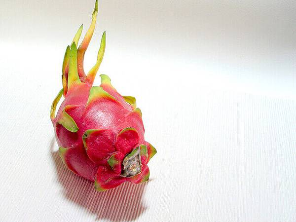 dragon-fruit-3-1523407-640x480.jpg