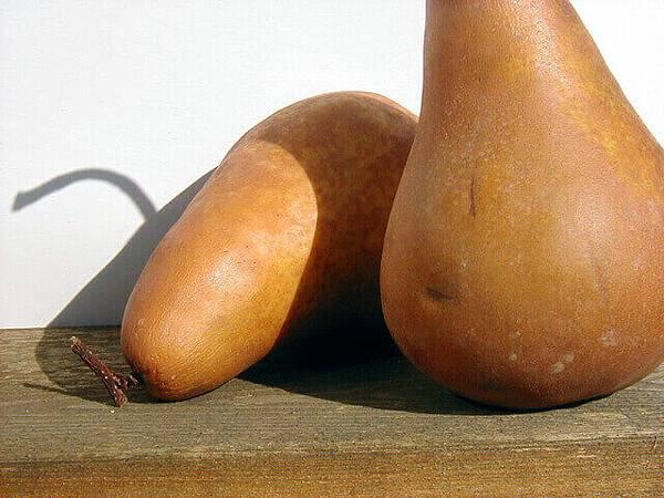 pears-detail-1490535-640x480.jpg