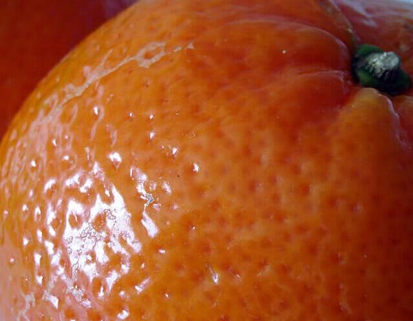 clementine-1328467-639x496.jpg