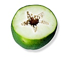 papaya-1325932-639x587.jpg