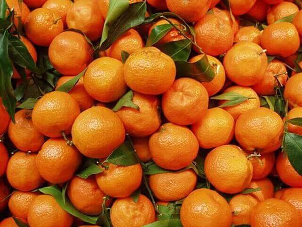 italian-oranges-1190768-640x480.jpg