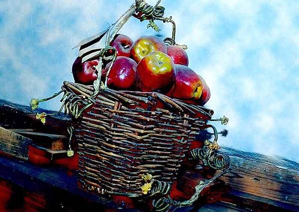 apple-1085373_640.jpg