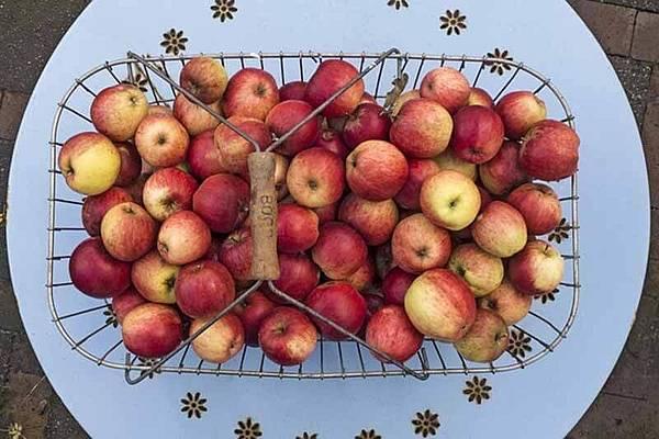 apple-1791998_640.jpg