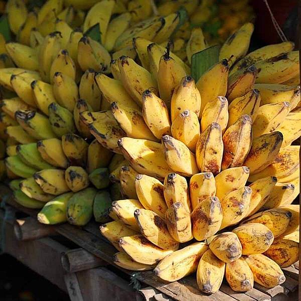 bananas-504478_640.jpg