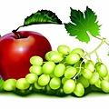 fruit-97479_640.jpg