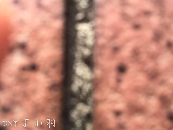 手機殼開箱文_5540.jpg
