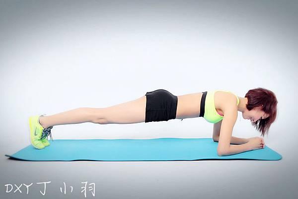 Plank_2208