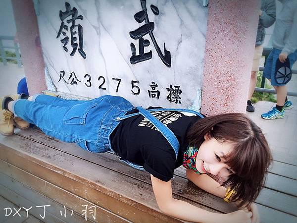 Plank_9275