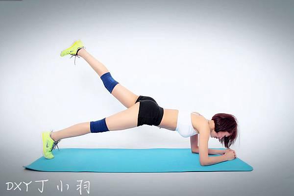 Plank_527
