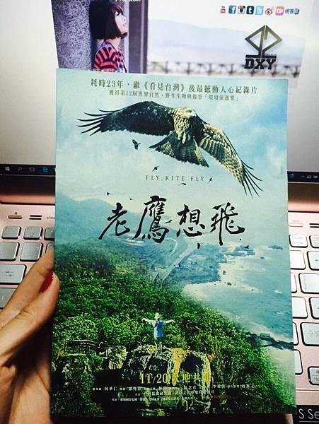 老鷹_4116.jpg