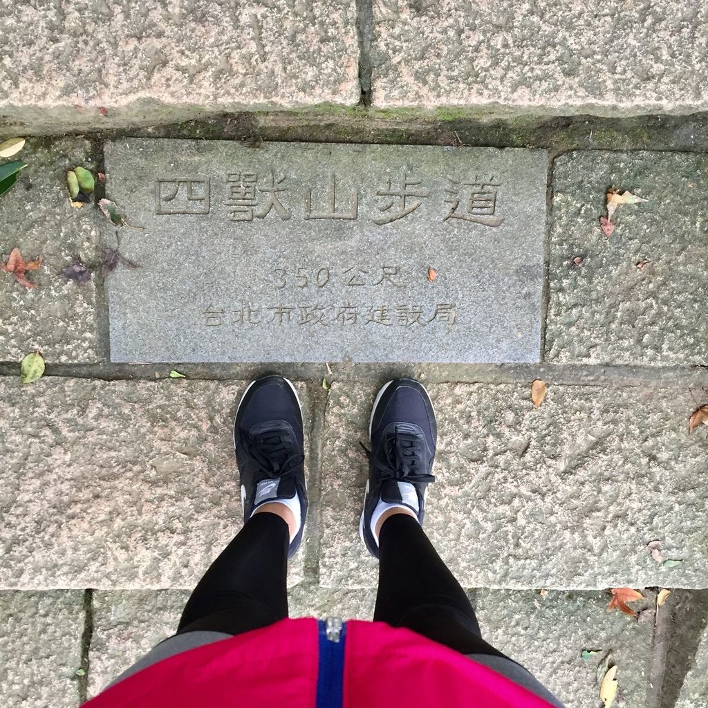 台北登山-南港山縱走親山步道-貫穿四條步道!四獸山步道.九五峯【丁小羽登山篇】
