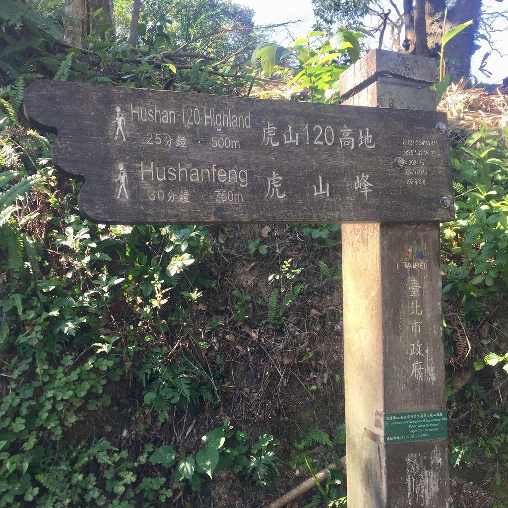 台北松山登山-虎山親山步道-松山奉天宮旁的虎山峰,超美虎山120高地【丁小羽登山篇】