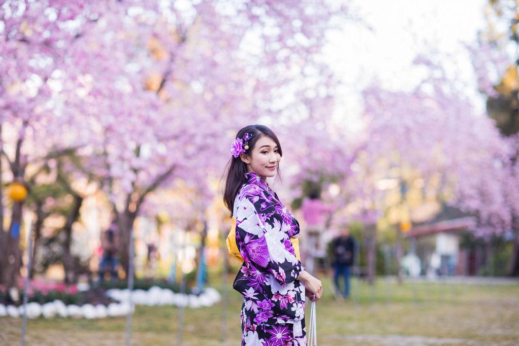 2020櫻花季!拉拉山櫻花季!桃園拉拉山恩愛農場~粉紅滿開炸裂富士櫻