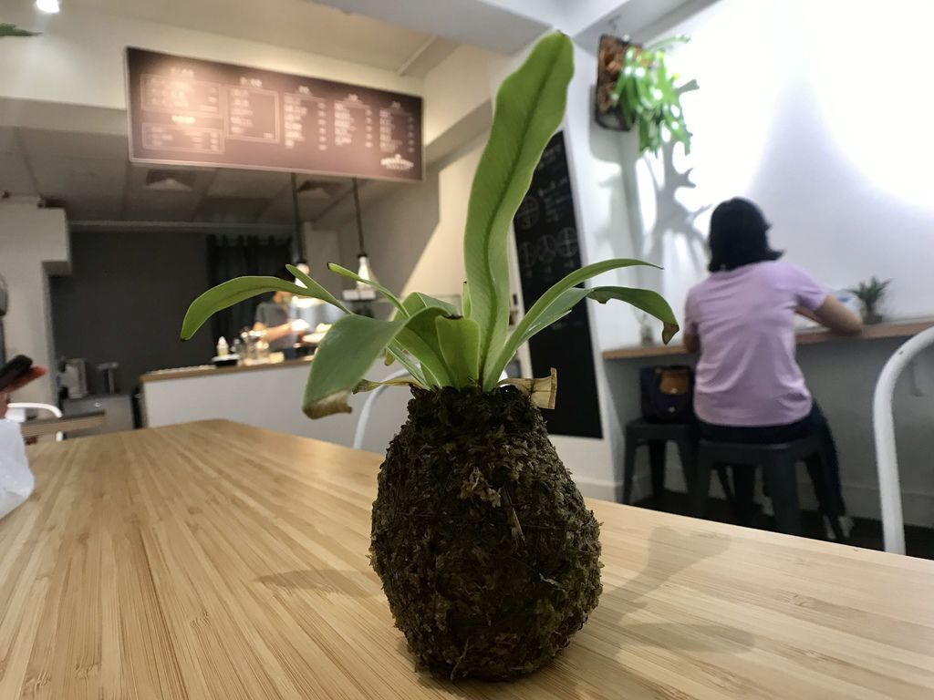 大安區美食-大安區的素食餐廳-MESSYPOT樂福蔬食廚房