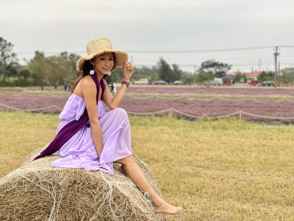 桃園楊梅景點-桃園仙草花節,超美的紫色花海,彷彿置身南法來趟紫爆仙境遊