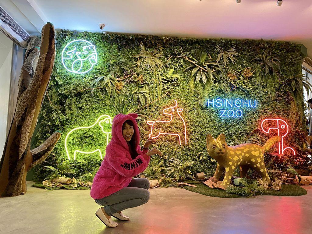 最老的動物園重生!新竹市立動物園,適合全家大小遊玩的新竹景點!