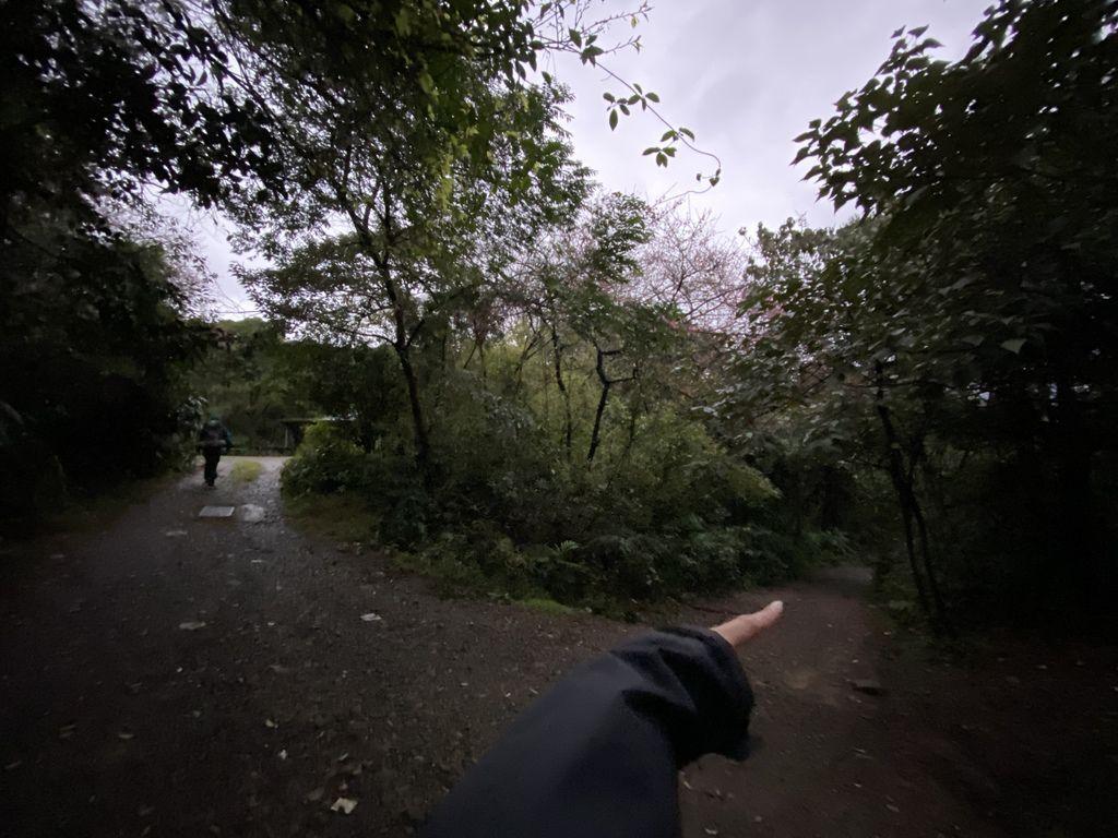 隱藏在陽明山的台北野溪溫泉,一起到下七股溫泉泡超美牛奶湯