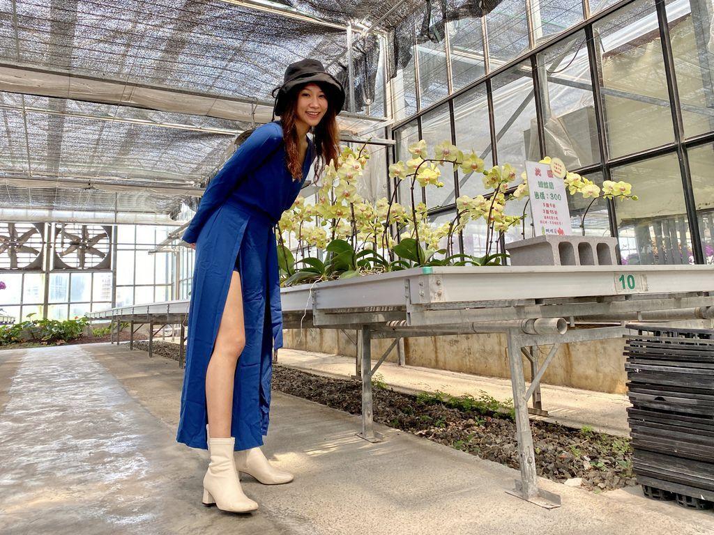 宜蘭礁溪景點-金車礁溪蘭花園,免費的室內景點,來當一天的蘭花仙子