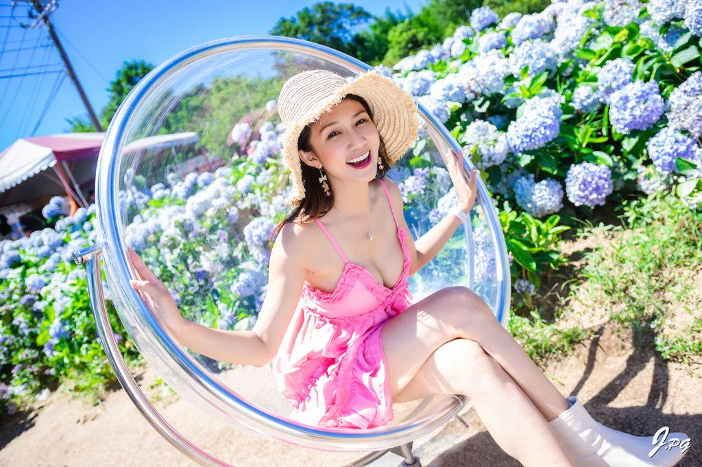 新北萬里景點-高家繡球花田-萬里第三園區,最新最夯的繡球花景點