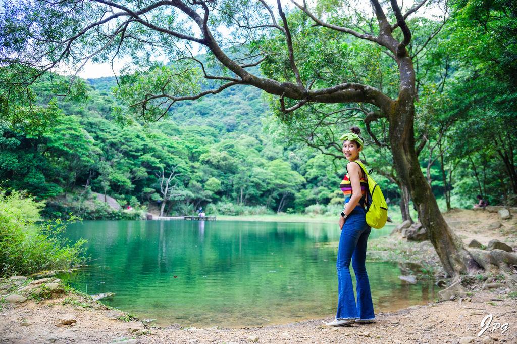 汐止景點-親民的新山夢湖登山步道,走訪汐止知名的夢幻之湖