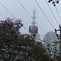 走在我家附近都可以看見它,從我三樓的窗外也可以看見它