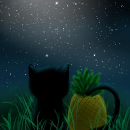 野貓x鳳梨
