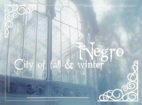 City of Negro.jpg