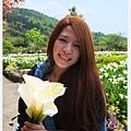 竹子湖海芋DSCF4274-20140406.JPG