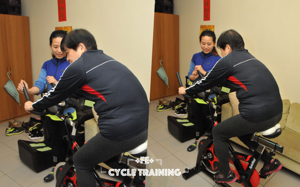cycle_training.png