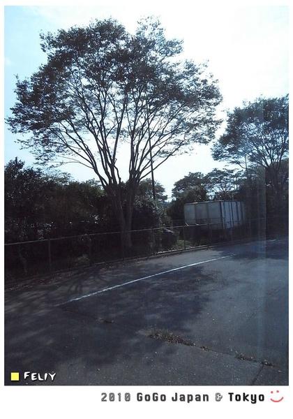 R0020046.jpg