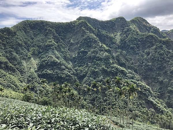 四大天王山景色