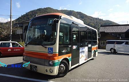 DSC08383.JPG