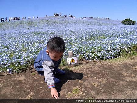 【大夢想家計畫】 帶孩子們一起遊日本