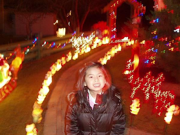 社區裏燈飾達人的後院
