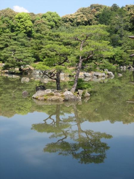 金閣寺一景