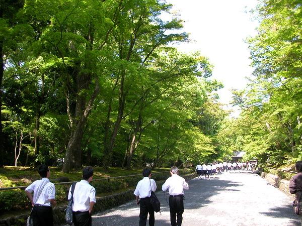 金閣寺入園前是一片森林