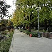 韓國 138.jpg